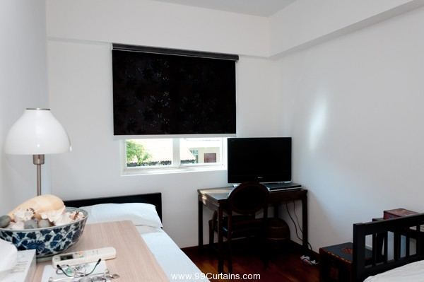 Dim Out Roller Blinds in The Guest Room